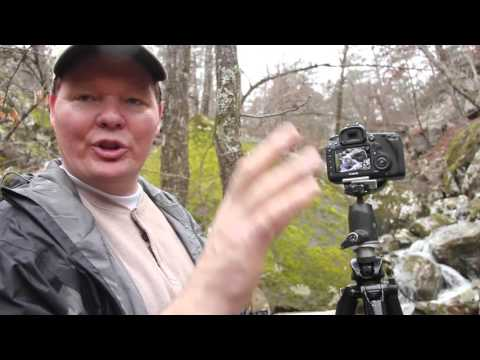 Adventures in Arkansas: William Rainey
