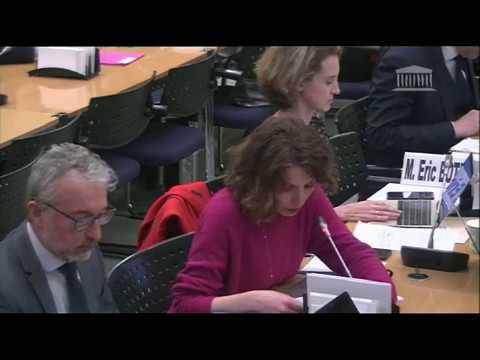 DG PJL audiovisuel commission affaires culturelles