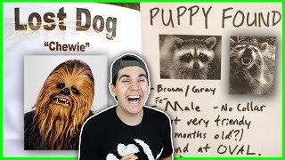 Hilarious Missing Pet Posters!