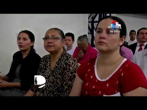 La envidia y sus efectos - (Pastora Carmen Valencia de Martinez)