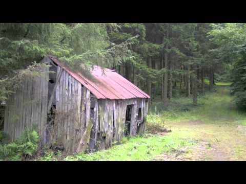 Elizabeth Cotten - Home Sweet Home