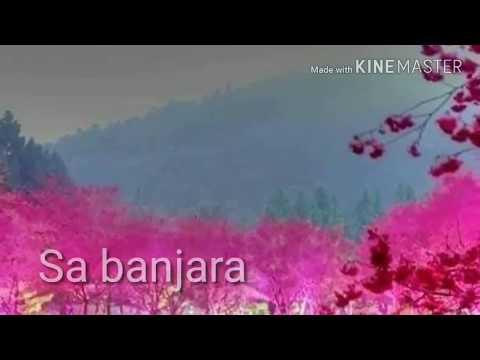 Disa joniye chori mara chandini rathema super hit new banjara songs