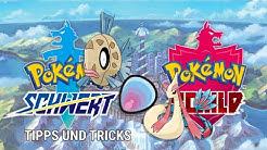 Pokemon Schwert und Schild - BARSCHWA FUNDORT UND ENTWICKLUNG