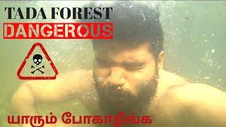 TADA FALLS AFTER LOCKDOWN | சென்னை அருகில் அழகிய அருவி! | pk vlogs india |ubbalamadugu| Tamil