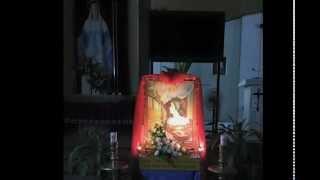 Cung Dan Tinh Yeu- Ca Doan Cecilia Vinh Phuoc - Tap Hat