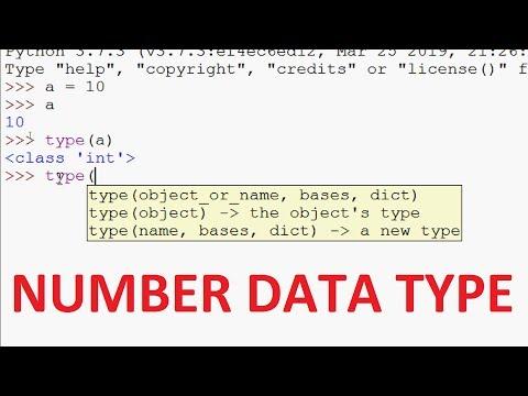 Python Tutorials - Number Data Type in Python thumbnail