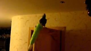 papuga zako bartas kovoja su dulkiu sluoste.