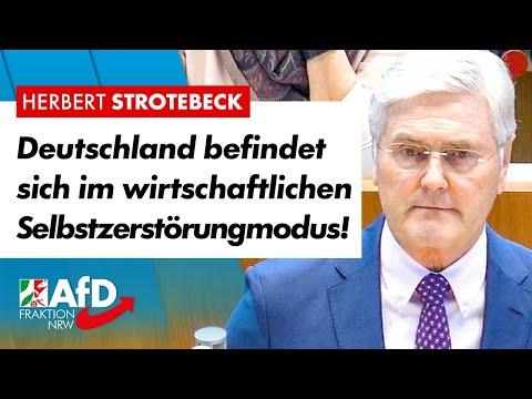 Deutschland befindet sich im wirtschaftlichen Selbstzerstörungmodus! – Herbert Strotebeck (AfD)