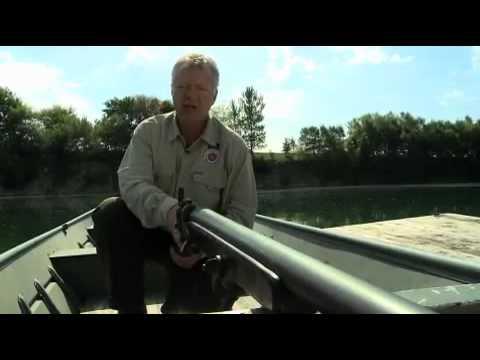 Punt gun - Wikipedia