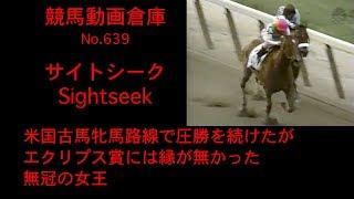 【競馬】サイトシーク Sightseek【No 639】