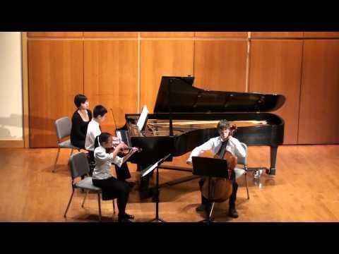 Haydn Piano Trio in D Major 1st Mvt
