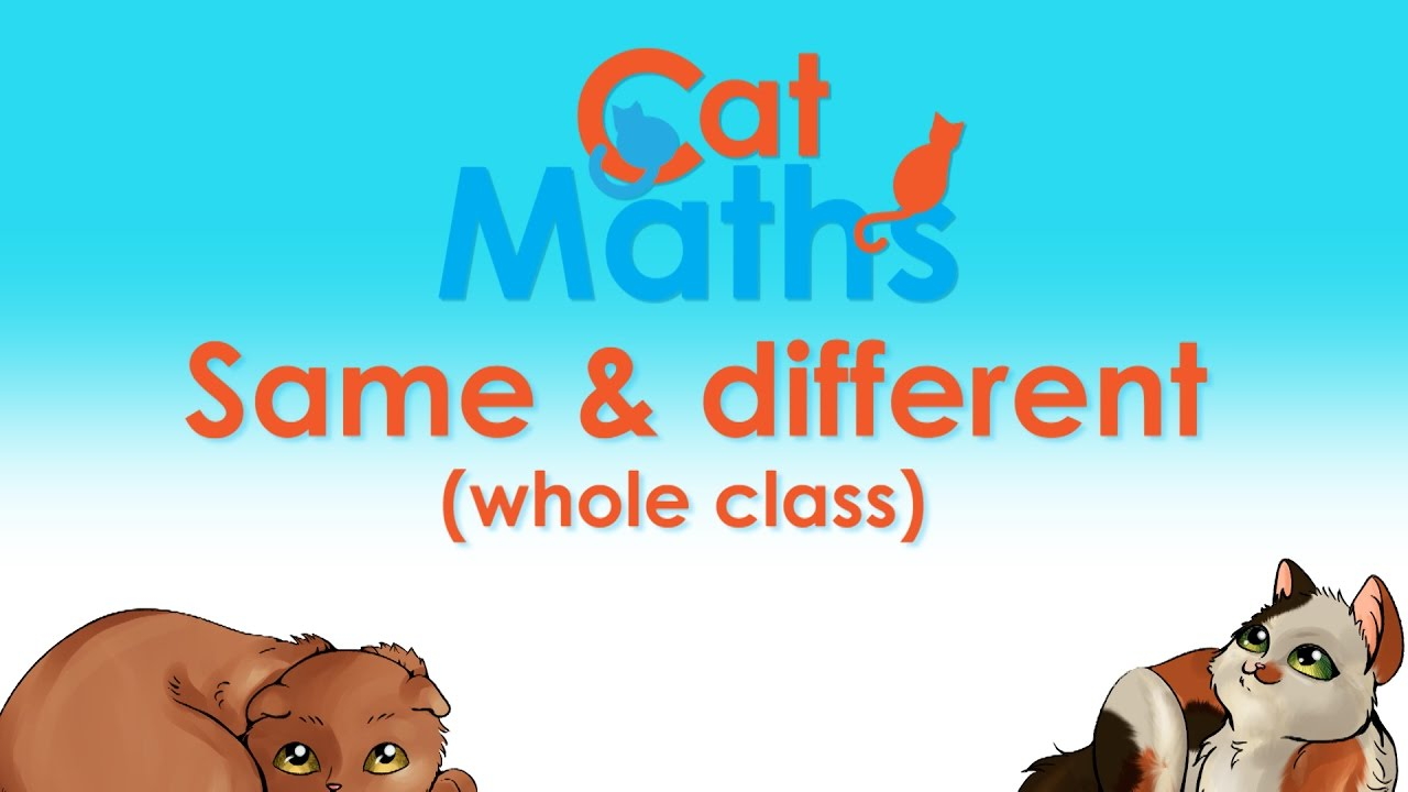 Cat Maths: Whole class activity on same and different - YouTube