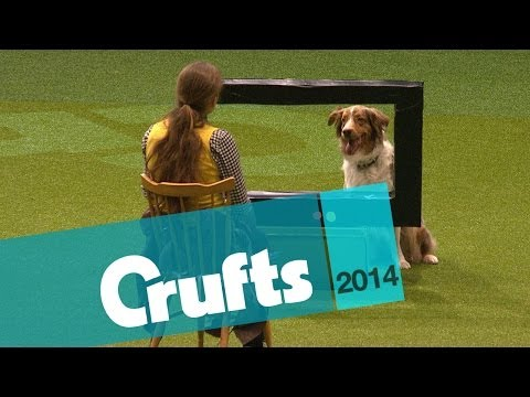 The Lighter Side of Crufts | Crufts 2014
