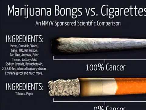 marijuana bad for you There are countless studies that seem to contradict one another as to whether or not marijuana is bad or good for you.