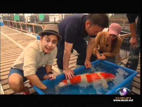 ปลาคาร์ฟแชมป์โลก8ล้าน