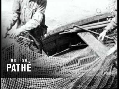 A Fisherman's Paradise (1925)