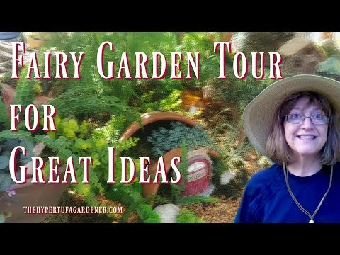 Fairy Garden Ideas and Pictures - Inspiration!