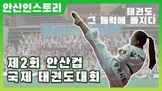 [안산IN스토리] 제2회 안산컵 국제 태권도대회