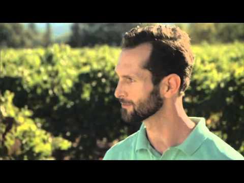 Provenance Vineyard  Tasting