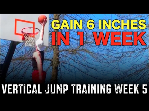 Vertical Jump Training Week 5: Gain 6 Inches In 1 Week