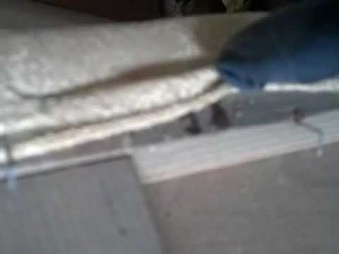 Bed bug treatment box spings
