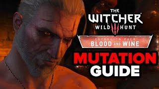 Best New Mutations in The Witcher 3: Blood and Wine