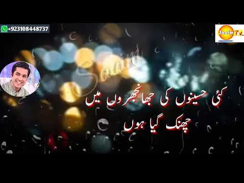 Latest Jogi Baba Poetry WhatsApp Status Mazaq Raat Tehzeeb Hafi Poetry  WhatsApp Status TikTok