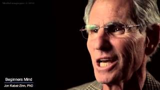 MBSR, The Attitude of a Beginners Mind by Jon Kabat-Zinn