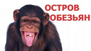 Тайланд острова #1.Остров обезьян Пхи Пхи в Тайланде