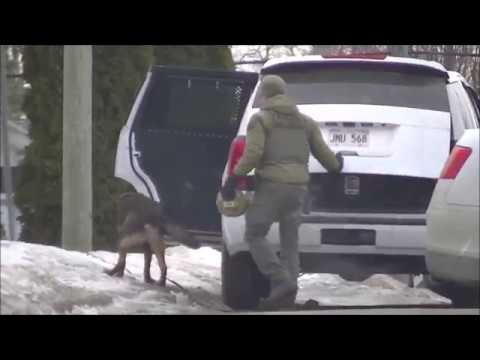 Feb 1st 2017 Moncton Bank Robbery Suspect Arrested After Standoff