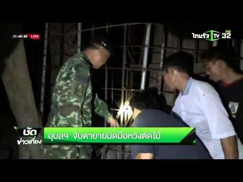 อุบลฯ จับตายายมัดมือหวังตัดไม้ | 15-03-59 | ชัดข่าวเที่ยง | ThairathTV