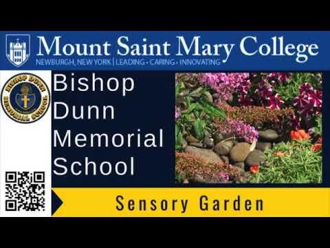 Bishop Dunn Memorial School Sensory Garden