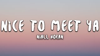 Niall Horan Nice To Meet Ya