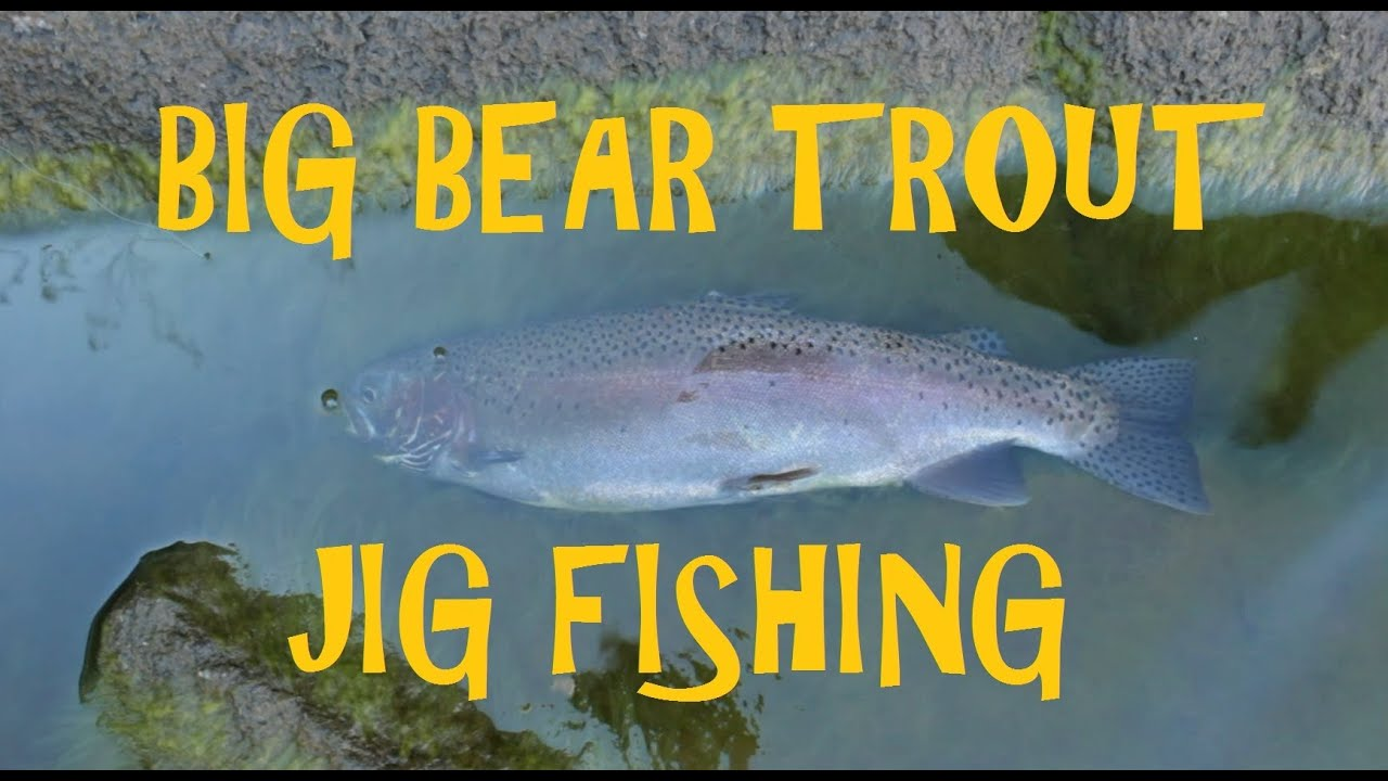 Fishing Bear Lake Fishing Report Autos Post