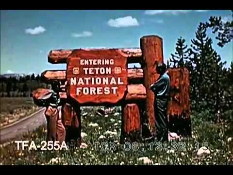 Wonderful Wyoming (1951)