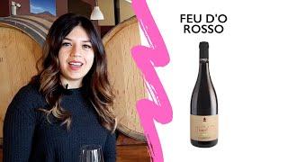 FEU D'O ROSSO 2018 Video