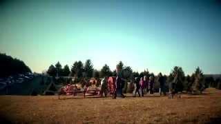Middleburg Christmas Tree Farm in Virginia
