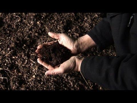 New fertilizer revolutionizes French agriculture