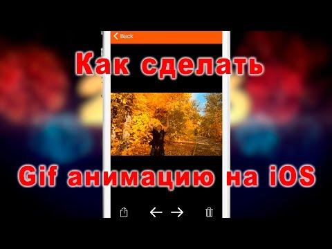 Как сделать гифку из видео в айфоне