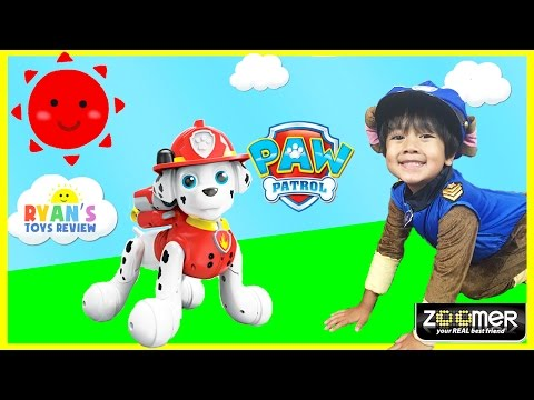 Paw Patrol Zoomer Marshall Interactive Pup Zoomer Kitty Whiskers Toys For Kids