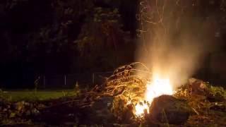 Bonfire Nights