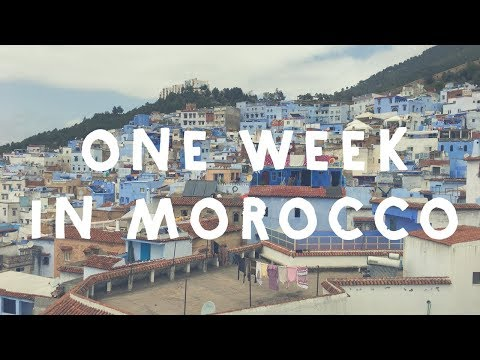 One week in Morocco! Inc. Fez, Chefchaouen and Casablanca.  | Travel Vlog