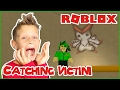 Catching Victini / Roblox Pokemon Brick Bronze