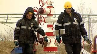 Профессия - нефтяник