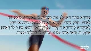 Happy day Light warriors!!! ZOHAR daily reading Shoftim 17-20 Love & Light
