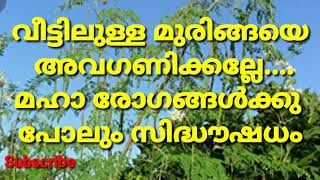 Remedies for naduvedana,prameham,cancer, diabetes/Advantages of drumstick leaves//Health malayalam
