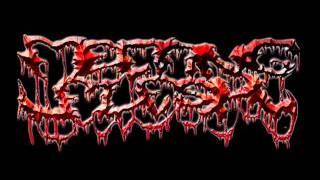 Download Melting Flesh - Mental Insanity