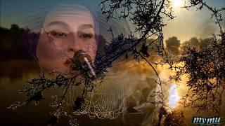 Молитва - Наргиз . Песня Людмилы Гурченко. Автор клипа - Тути