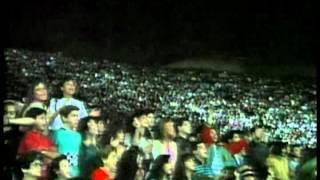 Festival de Viña 1990, Wilfrido Vargas, Abusadora