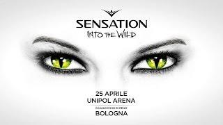 Sensation Italy 2014 'Into The Wild' trailer